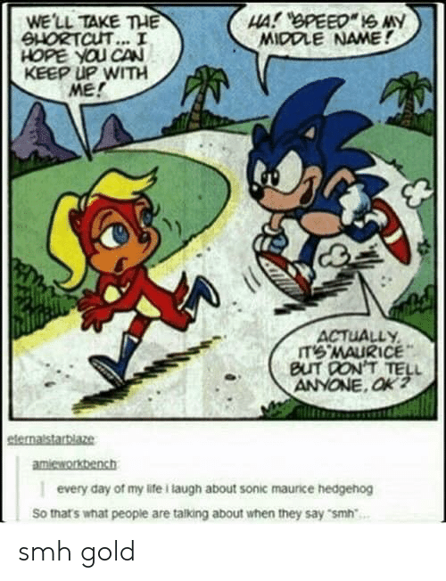 Life, Smh, and Hedgehog: WE'LL TAKE THE  SHORTCUT... I  HOPE YOU CAN  KEEP UP WITH  ME!  MIDDLE NAME!  ACTUALLY  IT'6·MAURICE  BUT DON'T TELL  amieworkbench  every day of my life i laugh about sonic maurice hedgehog  So thats what people are talking about when they say smh smh gold
