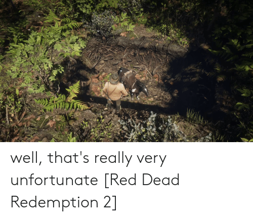 Red Dead Redemption, Red Dead, and Red: well, that's really very unfortunate [Red Dead Redemption 2]