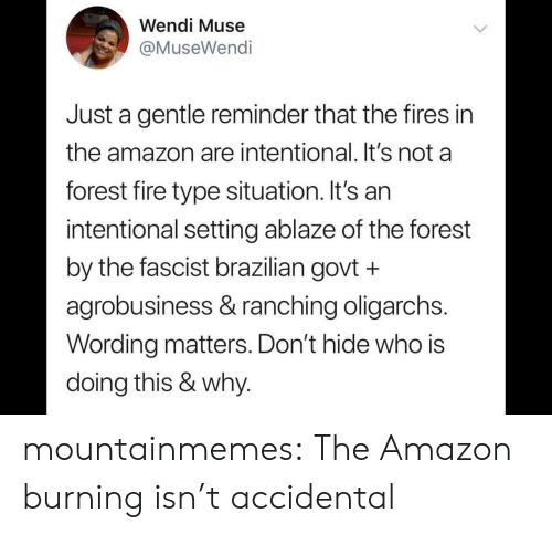 Brazilian: Wendi Muse  @MuseWendi  Just a gentle reminder that the fires in  the amazon are intentional. It's not a  forest fire type situation. It's an  intentional setting ablaze of the forest  by the fascist brazilian govt +  agrobusiness & ranching oligarchs.  Wording matters. Don't hide who is  doing this & why. mountainmemes:  The Amazon burning isn't accidental
