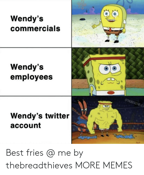 Dank, Memes, and Target: Wendy's  commercials  Wendy's  employees  @THEBREADTHEVES  Wendy's twitter  account Best fries @ me by thebreadthieves MORE MEMES