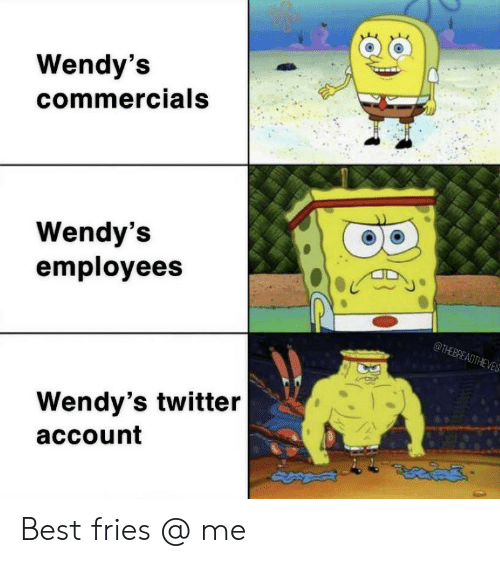 Twitter, Wendys, and Best: Wendy's  commercials  Wendy's  employees  @THEBREADTHEVES  Wendy's twitter  account Best fries @ me