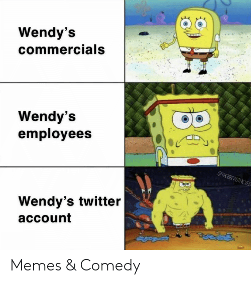 Memes, Twitter, and Wendys: Wendy's  commercials  Wendy's  employees  @THEBREADTHEVES  Wendy's twitter  account Memes & Comedy