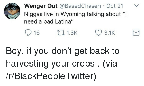 """Bad, Blackpeopletwitter, and Live: Wenger Out @BasedChasen Oct 21 V  Niggas live in Wyoming talking about """"I  need a bad Latina""""  16 1.3 3.1K <p>Boy, if you don't get back to harvesting your crops.. (via /r/BlackPeopleTwitter)</p>"""
