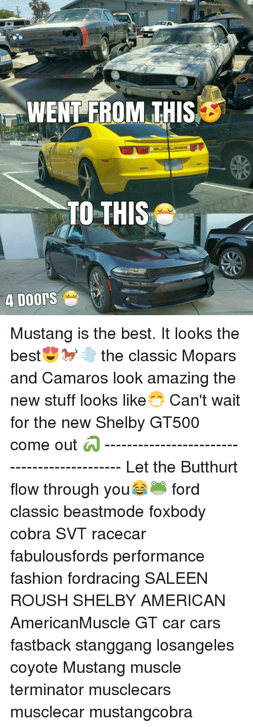 Butthurt, Cars, and Fashion: WENT FROM THIS  TO THIS  4 Doors Mustang is the best. It looks the best😍🐎💨 the classic Mopars and Camaros look amazing the new stuff looks like😷 Can't wait for the new Shelby GT500 come out 🐍 -------------------------------------------- Let the Butthurt flow through you😂🐸 ford classic beastmode foxbody cobra SVT racecar fabulousfords performance fashion fordracing SALEEN ROUSH SHELBY AMERICAN AmericanMuscle GT car cars fastback stanggang losangeles coyote Mustang muscle terminator musclecars musclecar mustangcobra