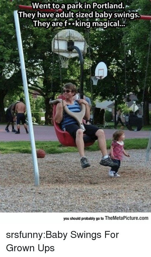 portland: Went to a park in Portland.  They have adult sized baby swings.  Thev aref**king magical.  you should probably go to TheMetaPicture.com srsfunny:Baby Swings For Grown Ups