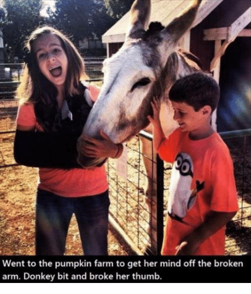 Broken Arms: Went to the pumpkin farm to get her mind off the broken  arm. Donkey bit and broke her thumb.