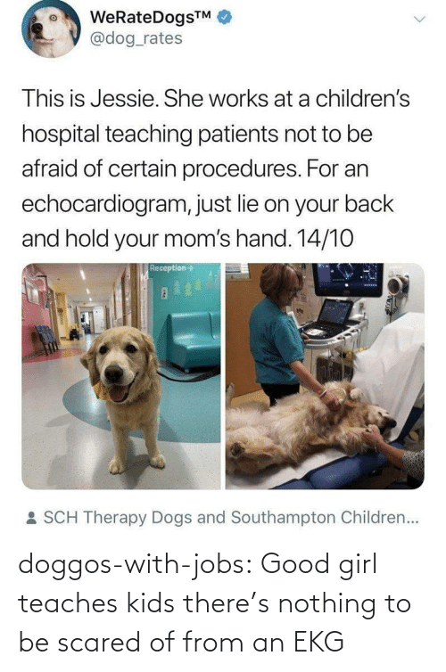 hold: WeRateDogsTM  @dog_rates  This is Jessie. She works at a children's  hospital teaching patients not to be  afraid of certain procedures. For an  echocardiogram, just lie on your back  and hold your mom's hand. 14/10  Reception->  : SCH Therapy Dogs and Southampton Children... doggos-with-jobs:  Good girl teaches kids there's nothing to be scared of from an EKG