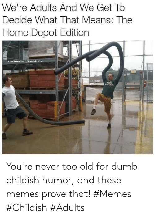 Depot: We're Adults And We Get To  Decide What That Means: The  Home Depot Edition  Facebook.com/listables.co You're never too old for dumb childish humor, and these memes prove that! #Memes #Childish #Adults