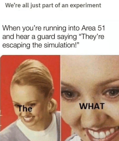 "simulation: We're all just part of an experiment  When you're running into Area 51  and hear a guard saying ""They're  escaping the simulation!""  WHAT  The"