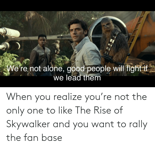 Will Fight: We're not alone, good people will fight if  we lead them When you realize you're not the only one to like The Rise of Skywalker and you want to rally the fan base