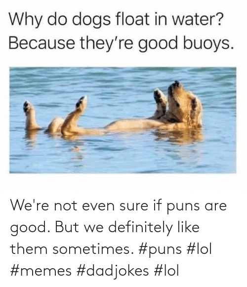 definitely: We're not even sure if puns are good. But we definitely like them sometimes. #puns #lol #memes #dadjokes #lol