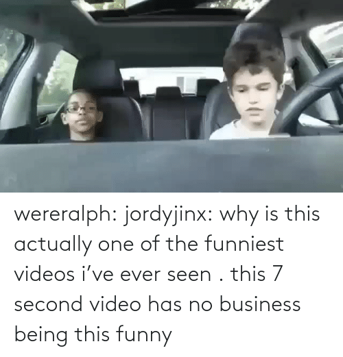 videos: wereralph: jordyjinx: why is this actually one of the funniest videos i've ever seen . this 7 second video has no business being this funny