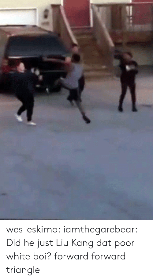 liu kang: wes-eskimo:  iamthegarebear:  Did he just Liu Kang dat poor white boi?  forward forward triangle