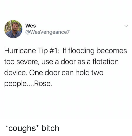 Bitch, Hurricane, and Rose: Wes  @WesVengeance7  Hurricane Tip #1: If flooding becomes  too severe, use a door as a flotation  device. One door can hold two  people....Rose. *coughs* bitch