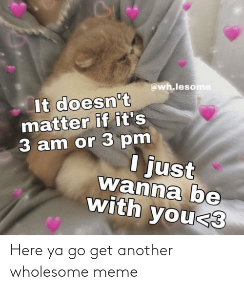 Doesnt Matter: @wh.lesome  It doesn't  matter if it's  3 am or 3 pm  I just  wanna be  with you<3 Here ya go get another wholesome meme