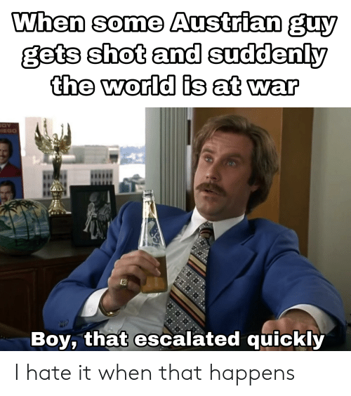 History, World, and Austrian: Whan some Austrian guy  gets shot and suddenly  the world is at war  Boy, that escalated quickly I hate it when that happens