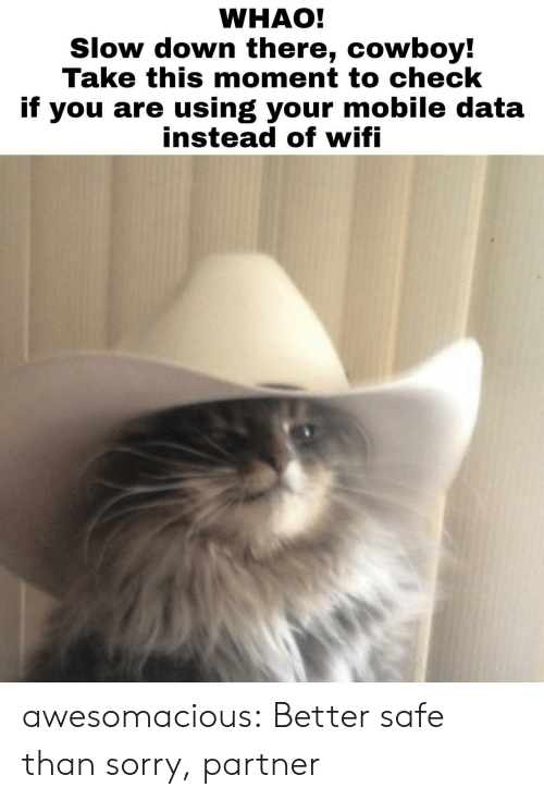 Sorry, Tumblr, and Blog: WHAO!  Slow down there, cowboy!  Take this moment to check  if you are using your mobile data  instead ot witi awesomacious:  Better safe than sorry, partner