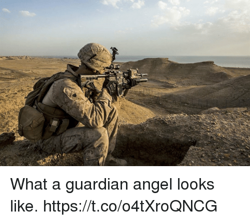 Memes, Angel, and Guardian: What a guardian angel looks like. https://t.co/o4tXroQNCG