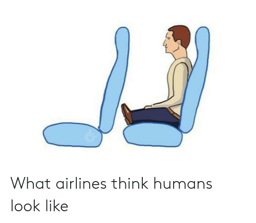 airlines: What airlines think humans look like