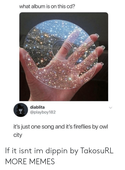 Dank, Memes, and Target: what album is on this cd?  diablita  @playboy182  it's just one song and it's fireflies by owl  city If it isnt im dippin by TakosuRL MORE MEMES