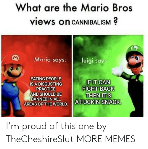luigi: What are the Mario Bros  views on CANNIBALISM  M  Mario says:  luigi says  EATING PEOPLE  IF IT CAN  FIGHT BACK  THEN IT'S  A FUCKIN SNACK  IS A DISGUSTING  PRACTICE  AND SHOULD BE  BANNED IN ALL  AREAS OF THE WORLD. I'm proud of this one by TheCheshireSlut MORE MEMES
