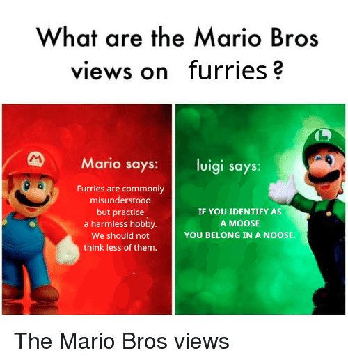 mario bros: What are the Mario Bros  views on furries?  Mario says: luigi says:  Furries are commonly  misunderstood  but practice  a harmless hobby.  We should not  think less of them.  IF YOU IDENTIFY AS  A MOOSE  YOU BELONG IN A NOOSE. The Mario Bros views