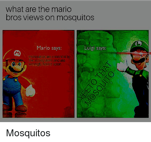 What Are The Mario Bros Views On Mosquitos Mario Says Luigi Says