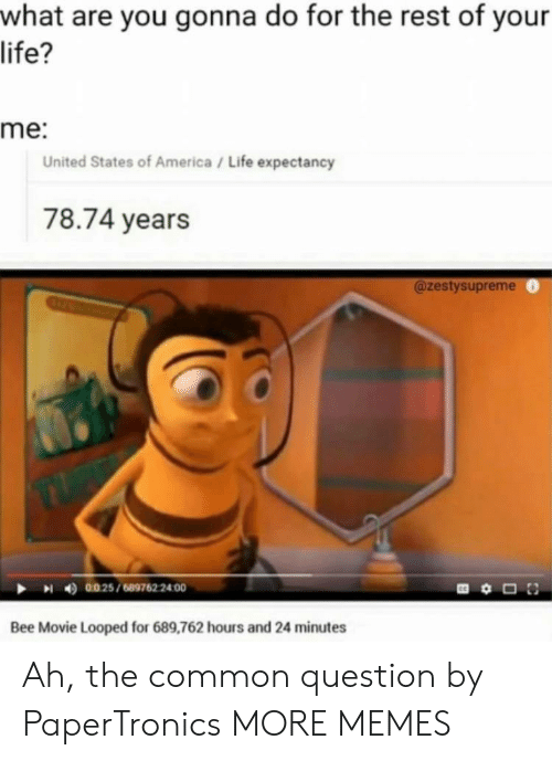 America, Bee Movie, and Dank: what are you gonna do for the rest of your  life?  me:  United States of America/ Life expectancy  78.74 years  @zestysupreme  4)  0025 / 689762 2400  Bee Movie Looped for 689,762 hours and 24 minutes Ah, the common question by PaperTronics MORE MEMES