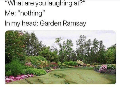 "Ramsay: ""What are you laughing at?""  Me: ""nothing""  In my head: Garden Ramsay"