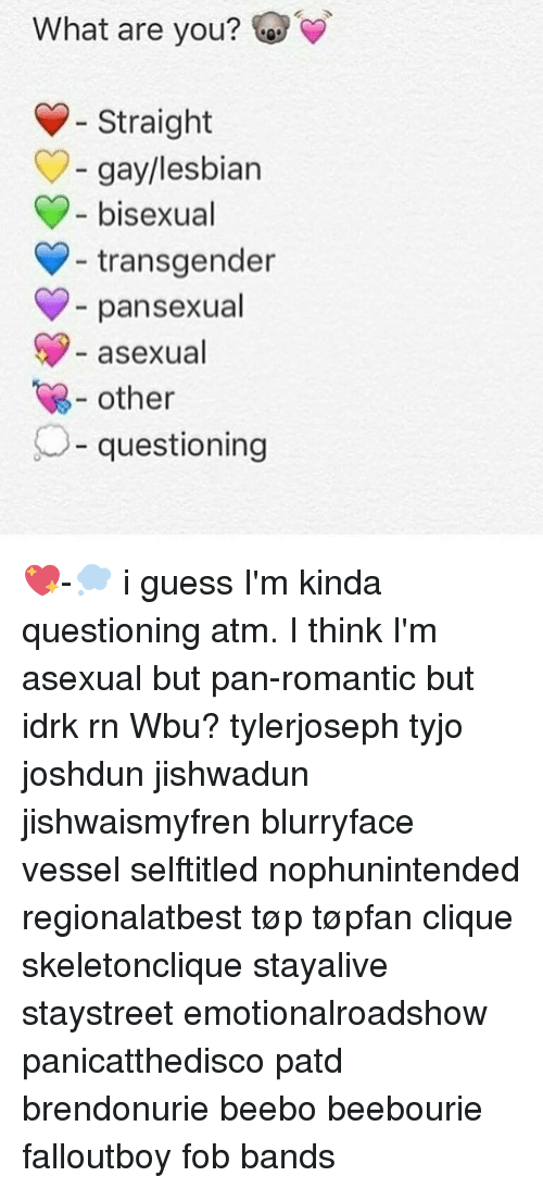 Pan asexual definition