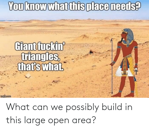 Area: What can we possibly build in this large open area?