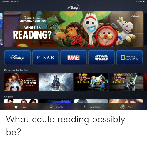 Possibly: What could reading possibly be?