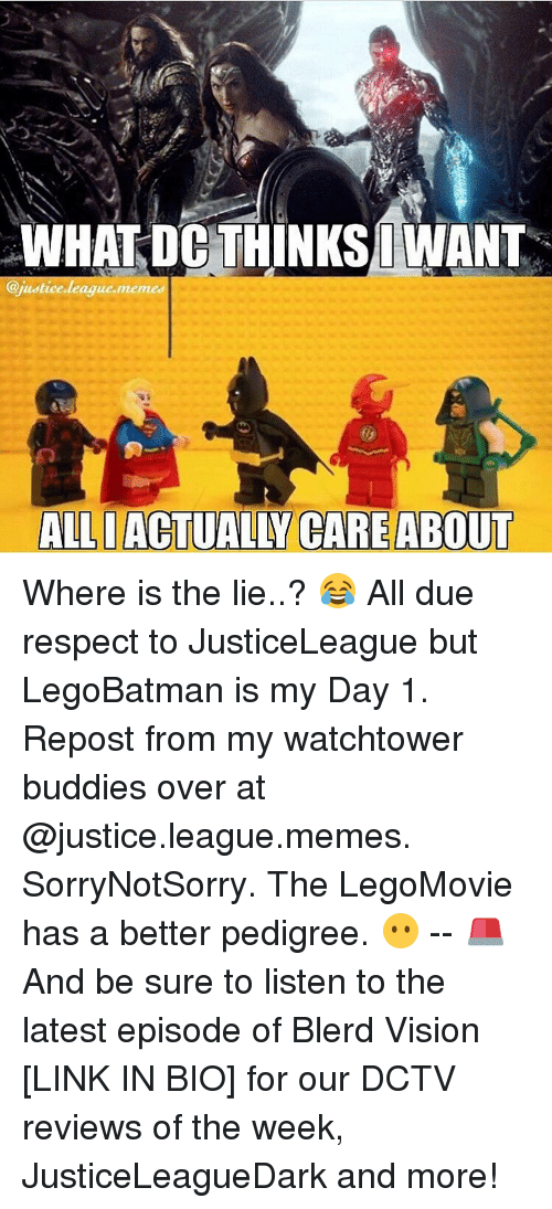 Memes, Justice League, and 🤖: WHAT DC THINKS IWANT  @justice league meme  ALLI ACTUALLY CARE ABOUT Where is the lie..? 😂 All due respect to JusticeLeague but LegoBatman is my Day 1. Repost from my watchtower buddies over at @justice.league.memes. SorryNotSorry. The LegoMovie has a better pedigree. 😶 -- 🚨 And be sure to listen to the latest episode of Blerd Vision [LINK IN BIO] for our DCTV reviews of the week, JusticeLeagueDark and more!