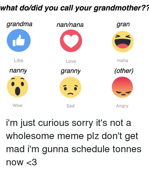 im just curious: what do did you call your grandmother??  grandma  gran  nan nana  Haha  Like  Love  (other)  nanny  granny  Wow  Sad  Angry i'm just curious sorry it's not a wholesome meme plz don't get mad i'm gunna schedule tonnes now <3