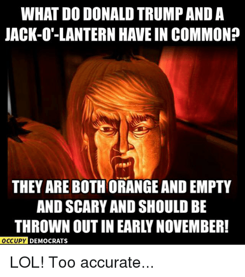jack o lantern: WHAT DO DONALD TRUMP AND A  JACK-O'-LANTERN HAVE IN COMMON?  THEY ARE BOTH ORANGE AND EMPTY  AND SCARY AND SHOULD BE  THROWN OUTIN EARLY NOVEMBER!  OCCUPY DEMOCRATS LOL! Too accurate...