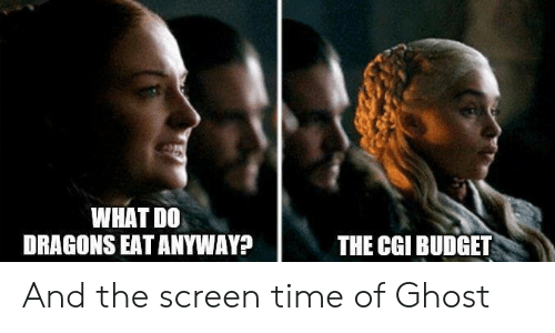 Dank, Budget, and Ghost: WHAT DO  DRAGONS EAT ANYWAY?  THE CGI BUDGET And the screen time of Ghost