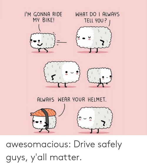 Tumblr, Blog, and Drive: WHAT DO I ALWAYS  TELL YOU?  M GONNA RIDE  MY BIKE!  ALWAYS WEAR YOUR HELMET  ) awesomacious:  Drive safely guys, y'all matter.