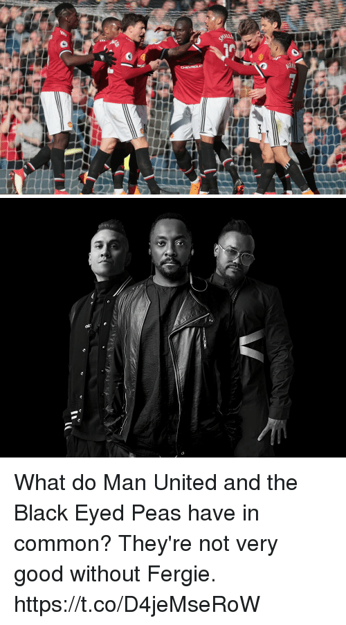 Soccer, Fergie, and Black: What do Man United and the Black Eyed Peas have in common?  They're not very good without Fergie. https://t.co/D4jeMseRoW