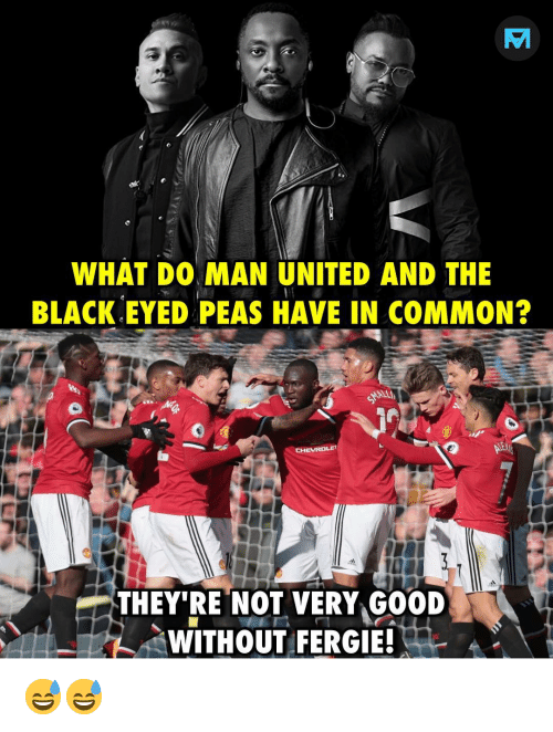 Memes, Fergie, and Black: WHAT DO MAN UNITED AND THE  BLACK EYED PEAS HAVE IN COMMON?  THEY'RE NOT VERY GOOD  WITHOUT FERGIE! 😅😅