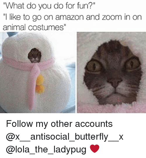 """zoom ins: """"What do you do for fun?""""  """"I like to go on amazon and Zoom in on  animal costumes"""" Follow my other accounts @x__antisocial_butterfly__x @lola_the_ladypug ❤️"""