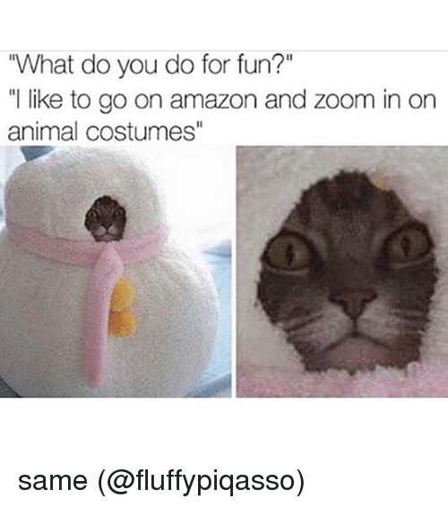 """zoom ins: """"What do you do for fun?""""  """" like to go on amazon and zoom in on  animal costumes same (@fluffypiqasso)"""