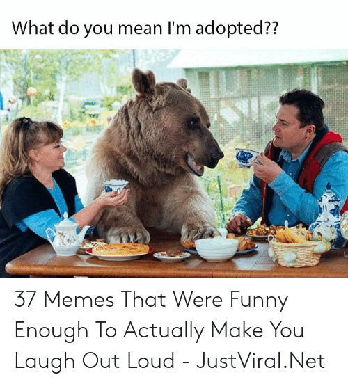 Adopted: What do you mean I'm adopted?? 37 Memes That Were Funny Enough To Actually Make You Laugh Out Loud - JustViral.Net
