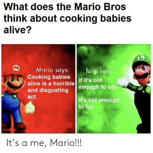 Mario: What does the Mario Bros  think about cooking babies  alive?  M  Mario says:  Cooking babies  alive is a horrible  and disgusting  luigi says:  If it's old  enough to cry,  act.  It's old enough  to fry. It's a me, Mario!!!