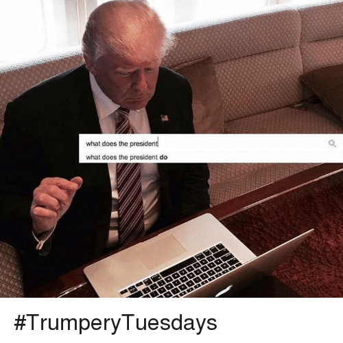 What Does The President Do: what does the president  what does the president do #TrumperyTuesdays