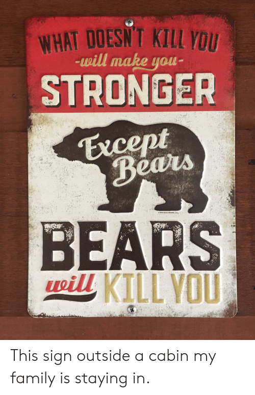 Family, Bears, and Llc: WHAT DOESNT KILL YOU  -will make you  STRONGER  Except  Bears  OPEN ROAD BRANDS, LLC  BEARS  pill KILL VOU This sign outside a cabin my family is staying in.
