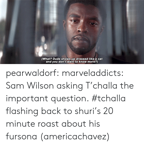 Dude, Roast, and Target: (What? Dude shows up dressed like a cat  and you don't want to know more?) pearwaldorf: marveladdicts: Sam Wilson asking T'challa the important question. #tchalla flashing back to shuri's 20 minute roast about his fursona (americachavez)