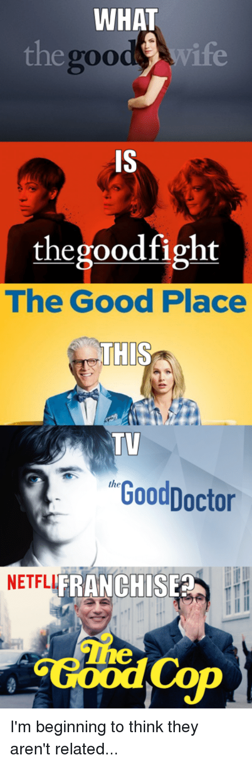 Funny, Good, and Wife: WHAT  egood wife  g00  IS  thegoodfight  The Good Place  THIS  TV  GoodDoctor  NETFLI  FRANCHISE  The I'm beginning to think they aren't related...