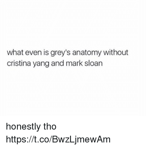 sloan: what even is grey's anatomy without  cristina yang and mark sloan honestly tho https://t.co/BwzLjmewAm