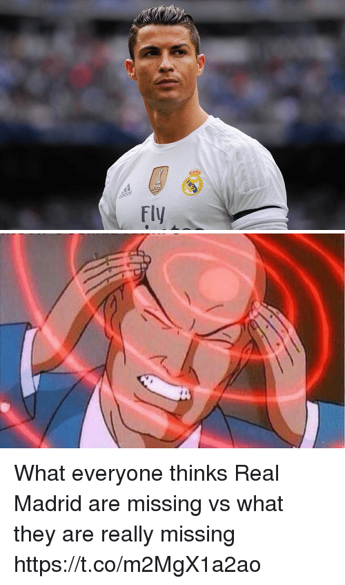 Memes, Real Madrid, and 🤖: What everyone thinks Real Madrid are missing vs what they are really missing https://t.co/m2MgX1a2ao