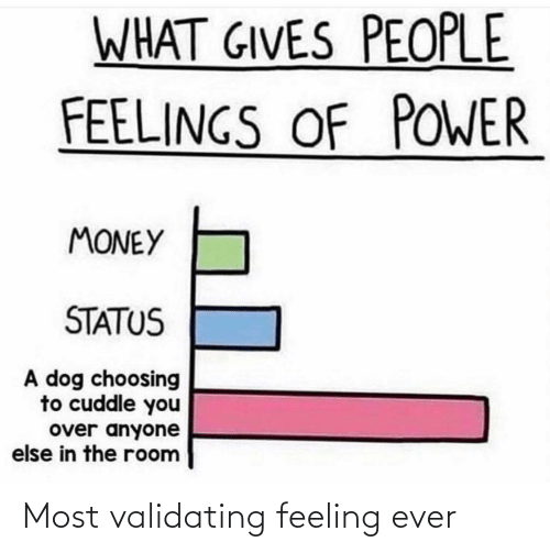 feelings: WHAT GIVES PEOPLE  FEELINGS OF POWER  MONEY  STATUS  A dog choosing  to cuddle you  over anyone  else in the room Most validating feeling ever